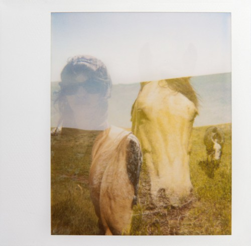 Amy and a Horse by Rachel Frank