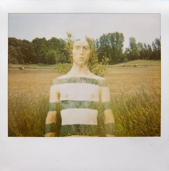 In Pieces by Rachel Frank