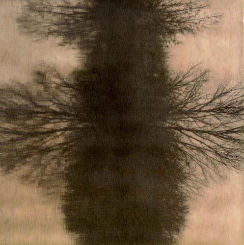 Reflection-Polaroid chocolateexpired 2009